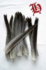 Graugans-Feder extralang 8+